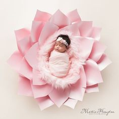 Inspiration For New Born Baby Photography : baby pictures newborn photography photographer frisco texas. martie hampton phot naissance part naissance bebe faire part felicitation baby boy clothes girl tips Foto Newborn, Newborn Baby Photos, Newborn Shoot, Newborn Pictures, Baby Girl Newborn, Infant Pictures, Baby Boy, Accessoires Photo, Baby Girl Pictures