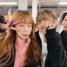 Secret Song, Memes Funny Faces, Fandom, Japanese Girl Group, Famous Girls, Pledis Entertainment, The Most Beautiful Girl, Female Singers, The Wiz