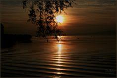 Herbst am Murtensee Autumn at Lake Murten Automne sur le lac de Morat Autunno sul Lago di Morat Otoño en el lago Morat Homeland, Switzerland, Celestial, Sunset, Outdoor, Beautiful, Lakes, Sunsets, Outdoors