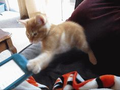 """""""I THOUGHT YOU SAID THIS WAS A FUN GAME."""" 
