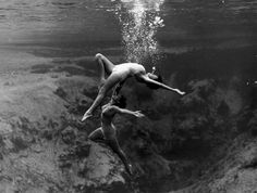 Photographer Toni Frissell took a haunting, iconic image at one of those springs for a Harper's Bazaar fashion shoot in 1947, which precisely evokes certain moments in Fight or Flight: