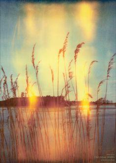 PRESENCE - Dan Isaac Wallin