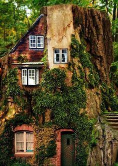 house built into a tree. I sooooo want to live with a tree INSIDE my house! Fairytale House, Crazy Houses, Unusual Homes, Fairy Houses, Tree Houses, Hobbit Houses, Houses Houses, House Built, In The Tree