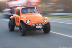 baja beetle