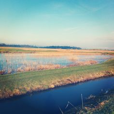 The ponds behind the sea wall Behind The Sea, Camber Sands, Ponds, River, Mountains, Beach, Wall, Nature, Outdoor