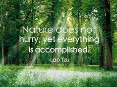 #Nature #Wellbeing #LaoTzu
