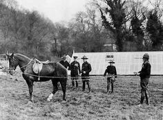 A newly-arrived horse is taken in hand at Shirehampton Remount Depot (Bristol in the Great War) #WW1