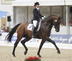 DEAUVILLE, France, July 26, 2015–Belgium's Francoise Hologne-Joux on Warhol won the Dress' In Deauville CDI3* Intermediate 1 Freestyle Sunday with the USA's Jennifer Hoffman on Florentinus V second–both with personal best scores.