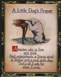 A Little Dog's Prayer 🐾🌹🐾 -----A Master who is firm and kind, And understands a Doggie's mind; A walkie and a meal each day; That's all I ask for when I pray. Love My Dog, Puppy Love, Dog Poems, Dog Quotes, Animal Quotes, Dog Sayings, Spitz Pomeranian, Pomeranians, Animals And Pets