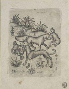 Drei Hunde und eine Katze Meister der Berliner Passion (2. Hälfte 15. Jh.)|Hersteller 3. Viertel des 15. Jahrhunderts Kupferstich-Kabinett Material and Technique Kupferstich, II (von II) Measurement 89 x 70 mm (Platte); 116 x 90 mm (Blatt)