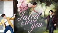 Fated to Love You (MBC) (운명처럼 널 사랑해) Starring Jang Hyuk and Jang Na Ra