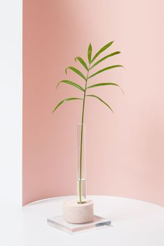 """Weekend Project: Modern DIY Bud Vases Using Plaster """"Entryway & Hall"""", """"living room"""", """"vases"""", """"How-To"""", """"Weekend Projects""""] Bud Vases, Flower Vases, Wall Vases, Deco Rose, Vase Crafts, Home Decor Vases, Crafts Beautiful, White Vases, Silver Vases"""