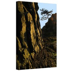 'Oregon Coast Sunset' by Dean Uhlinger Photographic Print Gallery-Wrapped on Canvas