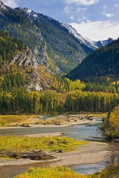 Landscape photo of autumn along the forestsfringing the Elk River and a mountain Range.