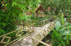 Pachira Lodge, Tortuguero National park, Costa Rica.  Beautiful and fun. Howler Monkeys were our alarm clocks.
