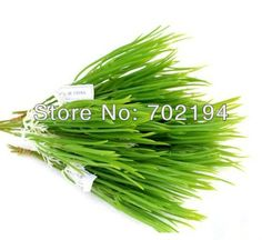 20 x Fashion fake green plant  Artificial Chinese chives bonsai potted plant for House decor in free shipping-in Decorative Flowers & Wreaths from Home & Garden on Aliexpress.com