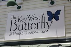 Key West Butterfly and Nature Conservatory, 1316 Duval Street, Key West, FL 33040:  it was one of our favorite stops on the entire trip. The butterflies are plentiful and amazing, and they're joined by an assortment of tropical birds (including a pair of rather vocal flamingos). A wonderful oasis from the crowded streets outside.