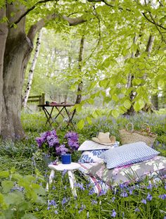"Set out those blankets, bring out the lemonaide, carry those books....time to make a new ""Nestling Station"" outside. Get out of that chair.... lets get to the great outdoors!  Now we're happy!"