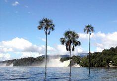 Canaima - Bolivar 04