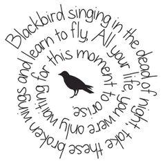 Blackbird #beatles #sticker #guitarcasedeco