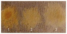 Le badigeon de chaux est la star d'une grande famille, la famille des laits de chaux. Avant lui, plus épais, plus rustique, il y a le chaulage à base de chaux vive éteinte en pâte. On l'utilisait pour désinfecter, pour donner un coup de blanc autour d'une fenêtre ou pour blanchir la maison au printemps,…