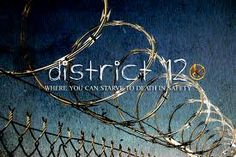 District 12 of the Hunger Games Series