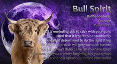 Power Animal, Spirit Guides, Spirit Animal, Supreme, Paintings, Movie Posters, Animals, Animales, Paint