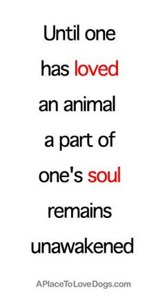 "Until one has loved an animal,  a part of one's soul remains unawakened.""    ~ Anatole France"