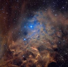 flamingstar_pugh_2666.jpg 1,333×1,311 pixels