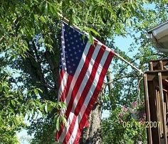 Old Glory - flying in our yard, framed by a wild cherry tree.  One of my favorite pictures!