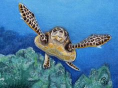 ACEO Green Sea Turtle Reef Ocean Art ORIGINAL MIxed Media Sherry Goeben #Miniature