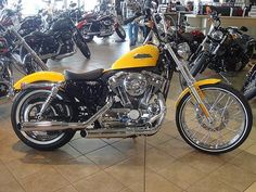 2013 SPORTSTER 1200 - Harley Davidson of Greenville