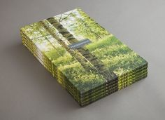 Prairiewood // Sorbara Development Group/Orchard Ridge Homes #design #realestate