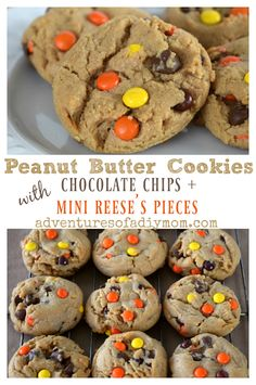 Peanut Butter Cookies perfect for busy days. You make the dough ahead of time and keep it in the fridge. Stick them in the oven as you sit down to dinner and you can have warm delicious cookies for dessert. These peanut butter cookies are packed with chocolate chips AND mini Reese's pieces!  #peanutbuttercookies #reesepieces #cookierecipe #peanutbuttercookierecipe #adventuresofadiymom #peanutbutterdesserts