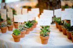 I have always loved having small potted plants double as name cards and favors. So cute and eco-friendly! Wedding 2017, Wedding Reception, Our Wedding, Wedding Stuff, Best Wedding Favors, Wedding Ideas, Wedding Inspiration, Chelsea Wedding, Cabin Wedding