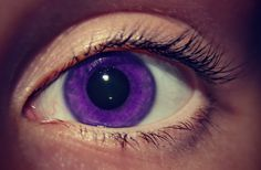 purple eyes - I'm in my happy PURPLE place ; Purple Contacts, Colored Eye Contacts, Purple Eye Makeup, Makeup Eyes, Purple Love, Shades Of Purple, Pretty Eyes, Beautiful Eyes, Black Contact Lenses