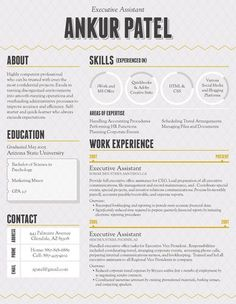 Real Estate Marketing Infographic Resume  Brooklyn Resume Studio