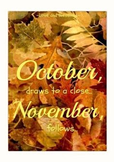 Goodbye October, Hello November! ❤️