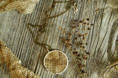 Copperhead Snake Skin Shedding Glass Specimen by HauntedCypress
