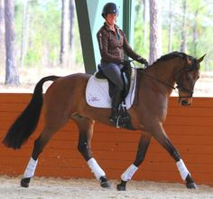 Meet Daredevil, Jennie Brannigan who is jumping to the Top of Eventing! -Part 1