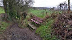 New bench found in Epen - Nieuwhuizerweg