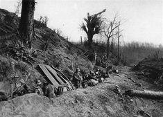 Defence on the Kemmelberg, Kemmel Ridge, South West of Ypres.