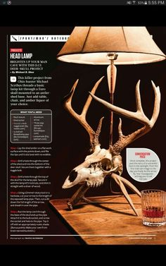 Cool looking skull mount ideal for a lamp.