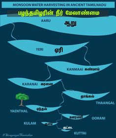 Rainwater harvesting in ancient Tamilnadu. Tamil Motivational Quotes, Tamil Love Quotes, Gernal Knowledge, General Knowledge Facts, Weird Facts, Fun Facts, Best Quotes Images, History Posters, Tamil Language