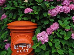 tokyopic-official:  The Japanese Red Mail Box / Tokyo Pic