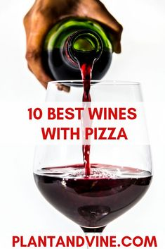 Best wine and pizza pairings guide. Perfect for your next pizza party or dinner night. Contains suggestions for wine types, bottles of wine, wine glasses, and wine decanters. Check out Plant & Vine for more vegan recipe and wine pairing ideas! Best Wine With Pizza, Wine And Pizza, Vegan Recipes Easy, Wine Recipes, Vegan Meals, Pizza Recipes, Barefoot Wine, Riesling Wine, Sweet White Wine