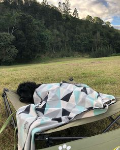 A Comfortable Bed = A Good Sleep 😴   Our Dog Bed and dog mats are designed to make your doggos have a comfortable nap time.  📷: @ballistic_bec  For more product info, Google Search Outdoor Connection Dog Bed.  Link in our bio for more product info.  Click the link above for more info!    #theoutdoorconnection #campingaustralia #exploreaustralia #weareexplorers #offroad #4x4 #campinggoals #camperlifestyle #campingadventures #stargazing #tent #campsite #campingwithdogs #tentdiaries