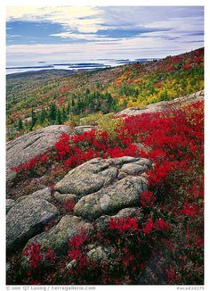 Acadia National Park - A Quick Guide To Photography - Luminous Landscape