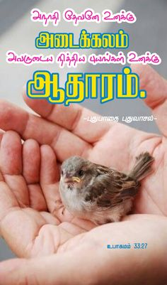 Bible Words In Tamil, Bible Words Images, Jesus Photo, Bible Verse Wallpaper, Biblical Verses, Favorite Bible Verses, Trust God, Bible Quotes, Blessings