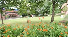 Surrounding gardens at Chandos Hall student accommodation in Manchester Manchester City Centre, Golf Courses, Dolores Park, Gardens, Student, Travel, Viajes, Outdoor Gardens, Destinations
